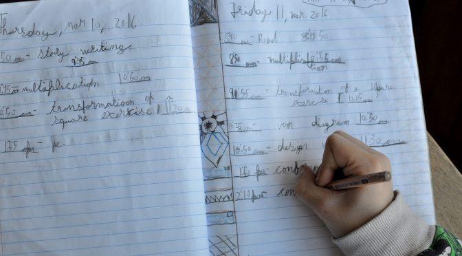 El diario del alumno en primaria