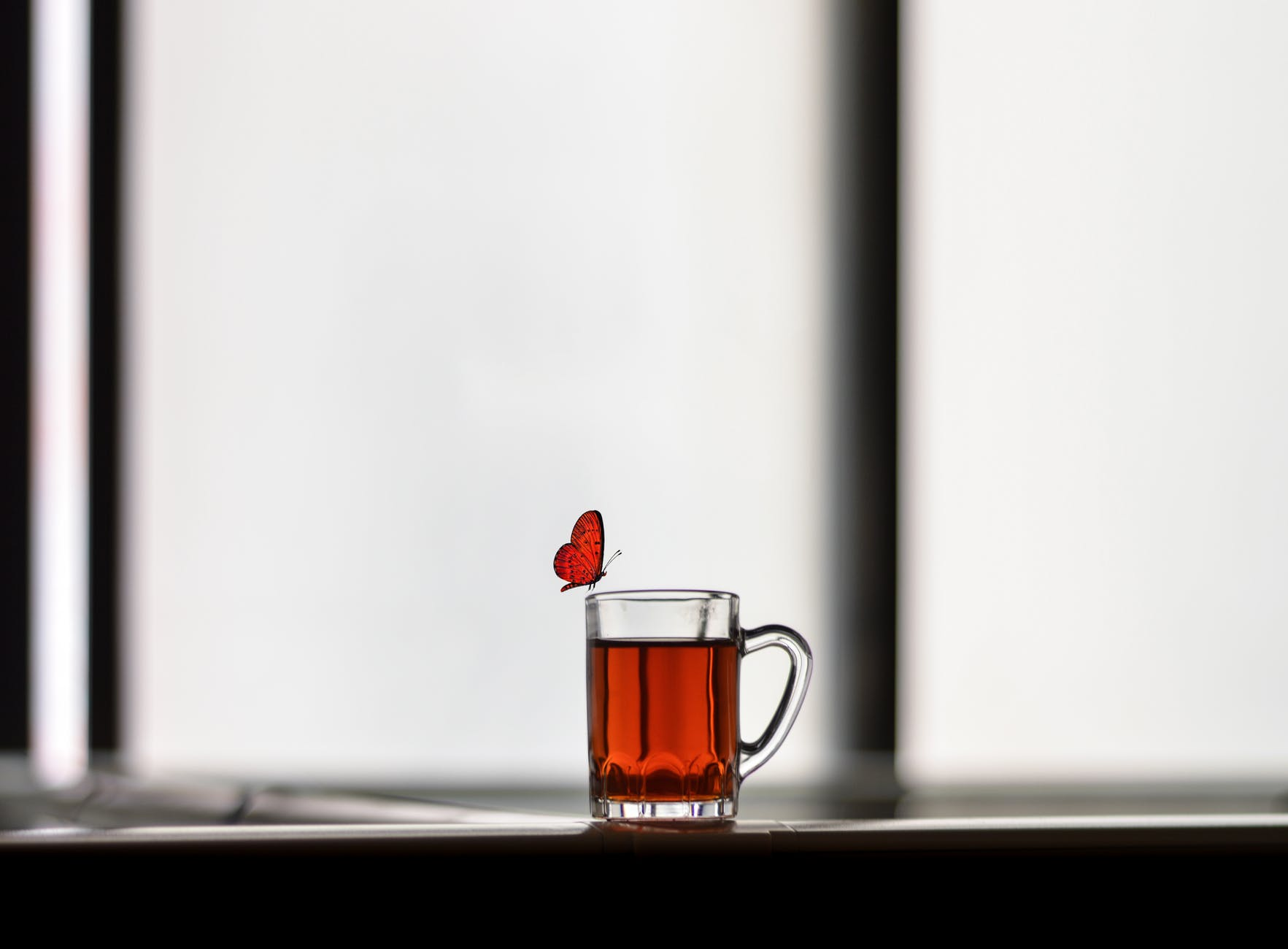butterfly on clear glass mug on table